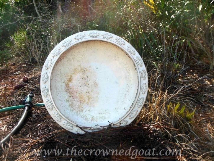 031115-2 How to Clean a Ceramic Glazed Birdbath DIY