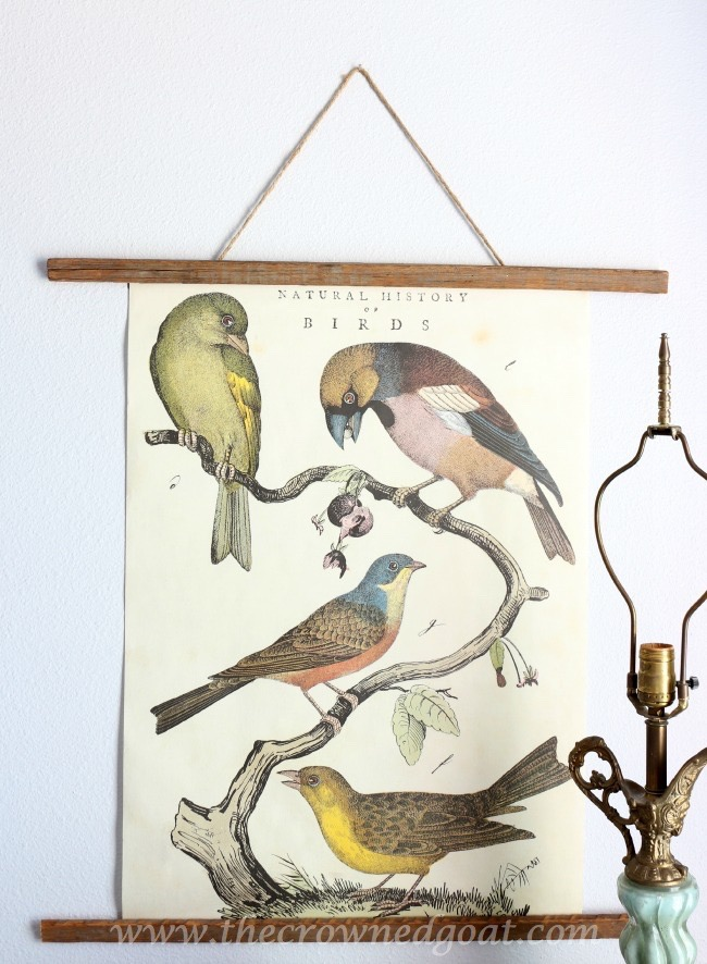 Natural-History-Posters-Framed-with-Tobacco-Sticks-The-Crowned-Goat-061915-4 Bedroom Makeover Decorating