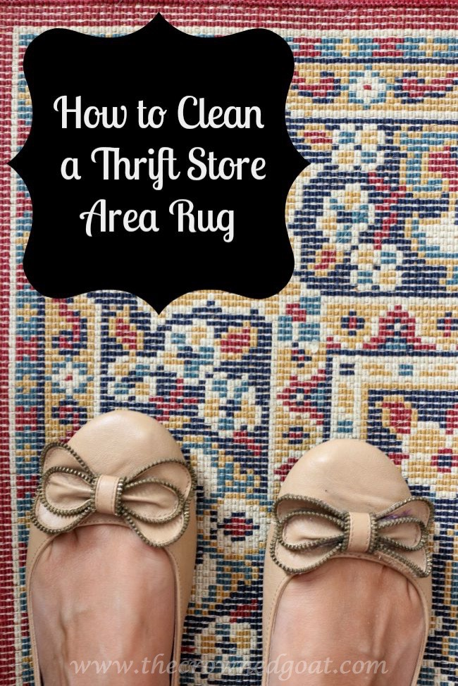 How To Clean A Thrifted Area Rug