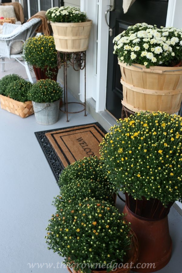 2015-Fall-Porch-Tour-092415-1 Fall Inspired Front Porch Tour Decorating Fall Holidays