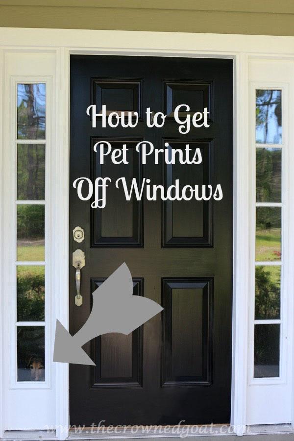 111015-11-Pinnable-1 How to Get Pet Prints Off Windows DIY