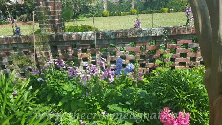 031516-8 5 Elements of a Cottage Garden Holidays