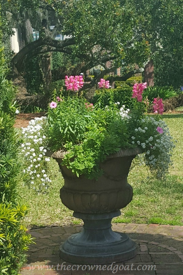 031516-9 5 Elements of a Cottage Garden Holidays