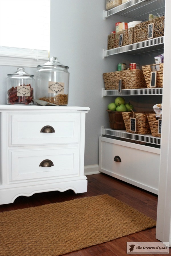 8-Tidy-Home-Tips-for-Dog-Owners-11 8 Tidy Home Tips for Dog Owners  DIY