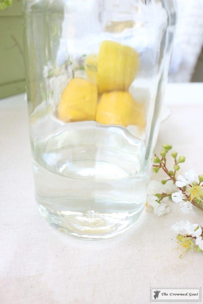 Lemongrass-and-Eucalyptus-Room-Freshener-7-683x1024 Lemongrass and Eucalyptus Room Freshener DIY