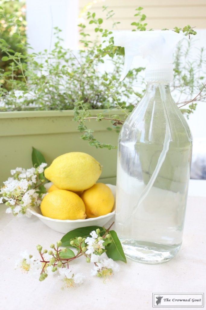 Lemongrass-and-Eucalyptus-Room-Freshener-9-683x1024 Lemongrass and Eucalyptus Room Freshener DIY