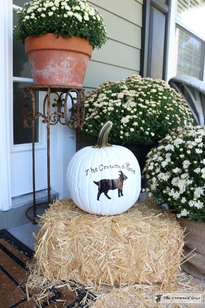 How-to-Customize-a-Painted-Pumpkin-14-683x1024 How to Personalize Pumpkins with Paint Decorating DIY Fall