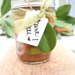 Holiday-Simmer-Pot-in-a-Jar-7-150x150 Holidays