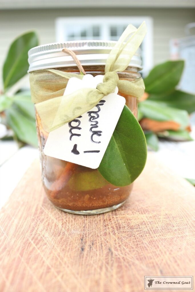 Holiday-Simmer-Pot-in-a-Jar-7-683x1024 Holiday Simmer Pot Recipe & Hostess Gift Idea Christmas DIY Holidays