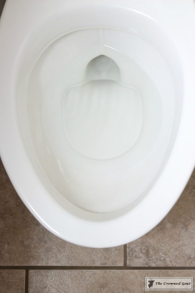 How to Get Hard Water Rings Out of the Toilet-9