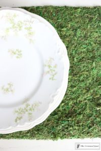 How to Make Moss Placemats-17