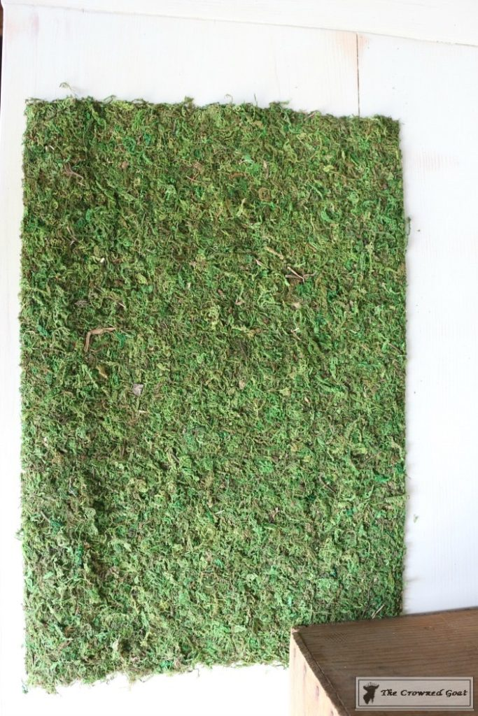 How-to-Make-Moss-Placemats-9-683x1024 The Easiest Way to Make Moss Placemats Crafts Decorating DIY Spring