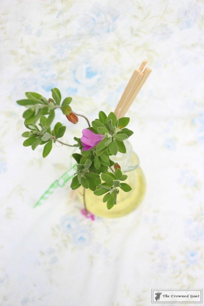 DIY-Lemongrass-Room-Diffuser-10-683x1024 How to Make a Lemongrass Room Diffuser Crafts DIY