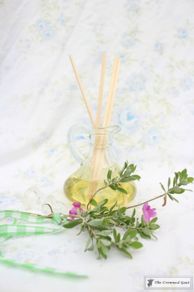 DIY-Lemongrass-Room-Diffuser-11-683x1024 How to Make a Lemongrass Room Diffuser Crafts DIY