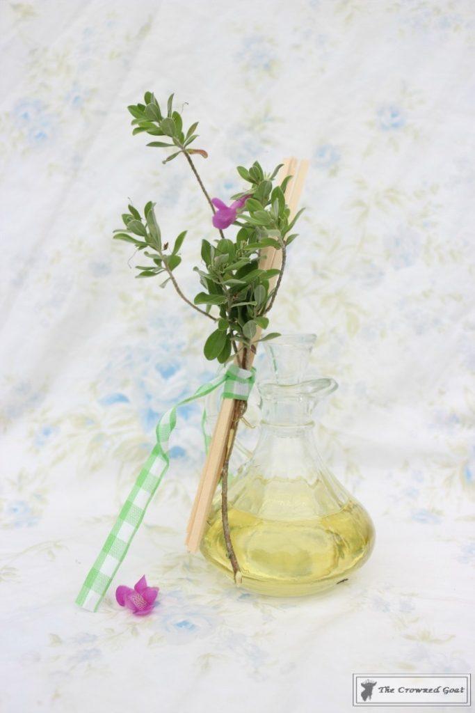 DIY-Lemongrass-Room-Diffuser-7-683x1024 How to Make a Lemongrass Room Diffuser Crafts DIY
