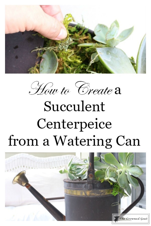 How-to-Create-a-Watering-Can-Succulent-Centerpiece-3 Don't Trash Your Old Watering Can DIY Summer